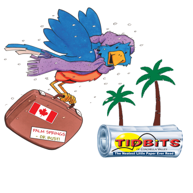 Snowbird flying with suitcase and paper